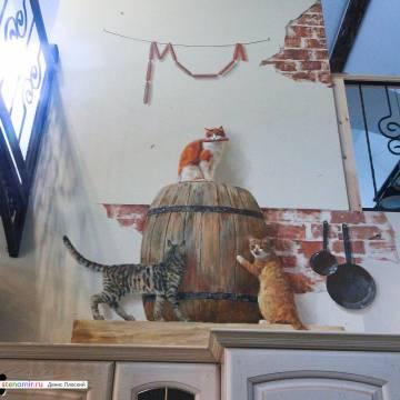 Нарисованные кошки на стенах домов / росписи с кошками